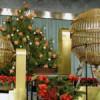 ¿Es tu número uno de los preferidos en la Lotería de Navidad?