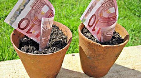 actualizar rentas y salarios