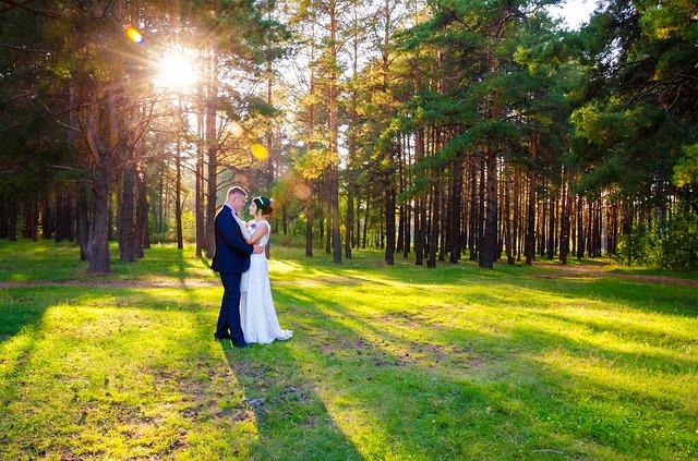 wedding-628515_640